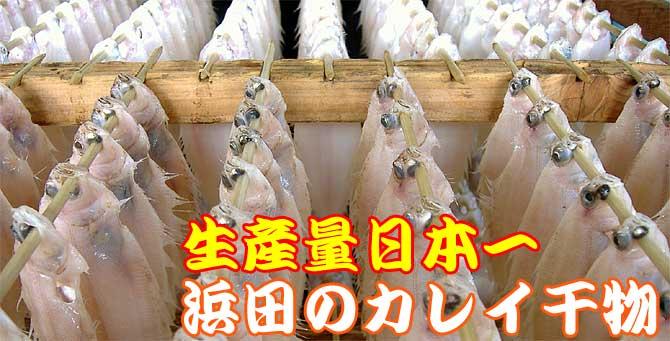 カレイ干物生産量日本一バナー